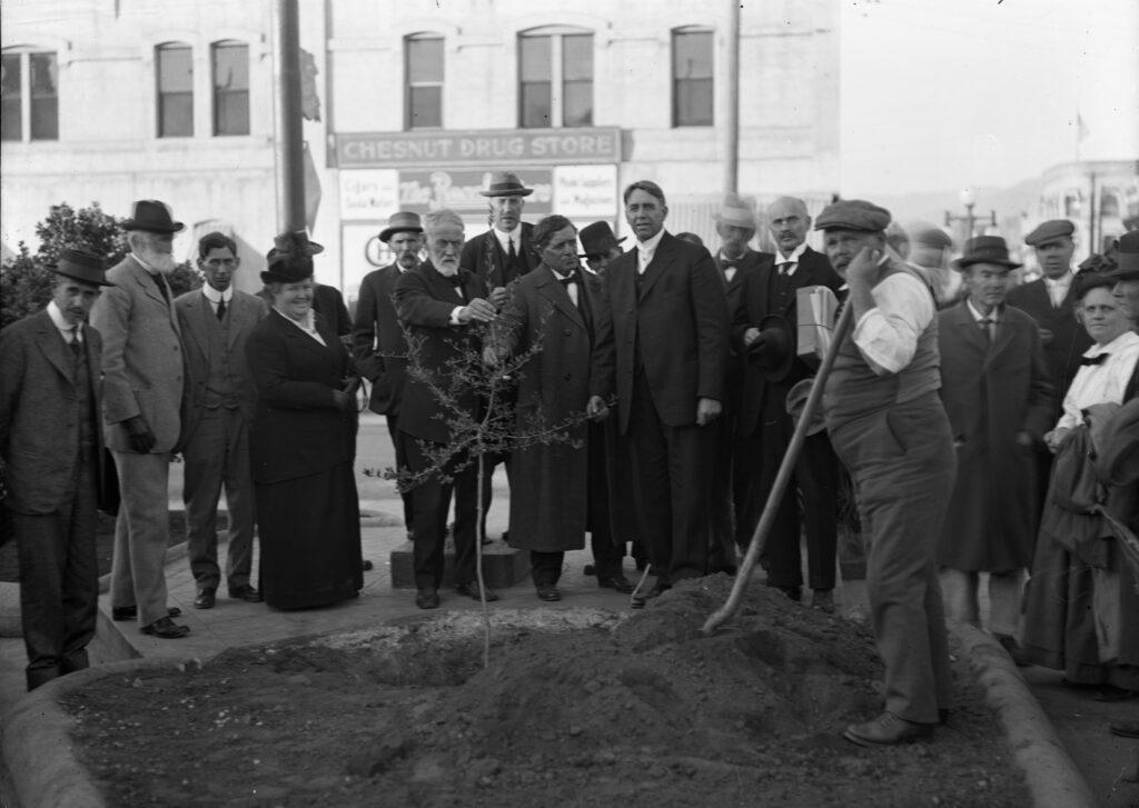 Arboricultural Society, Tree planting 11 12 1915 01